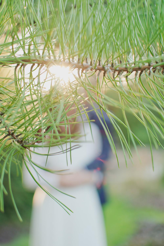 sesja slubna fotograf poznan siedem drzew biskupice TiAmoFoto 84 - Dobrochna ♥ Jarek