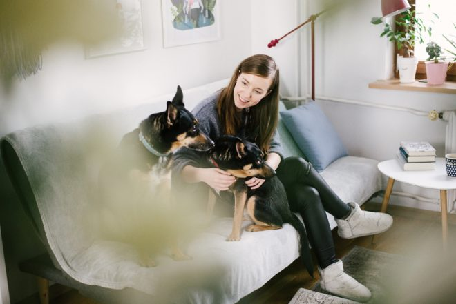 Mavelo-Dogs-TiAmoFoto (12)