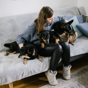 Mavelo-Dogs-TiAmoFoto (56)