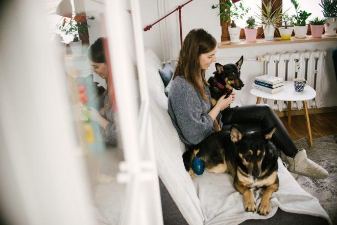 Mavelo-Dogs-TiAmoFoto (61)