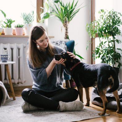 Mavelo-Dogs-TiAmoFoto (7)