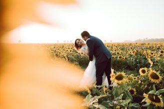 sesja-ślubna-pole-slonecznikow-TiAmoFoto (15)