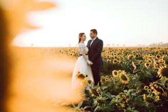 sesja-ślubna-pole-slonecznikow-TiAmoFoto (16)