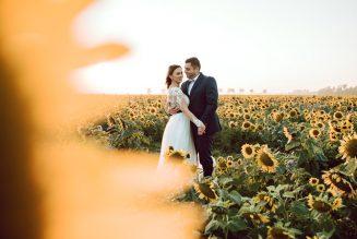 sesja-ślubna-pole-slonecznikow-TiAmoFoto (17)