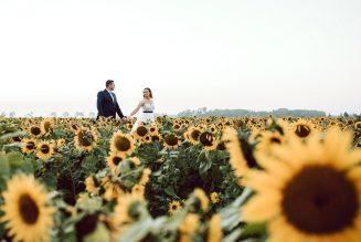 sesja-ślubna-pole-slonecznikow-TiAmoFoto (48)
